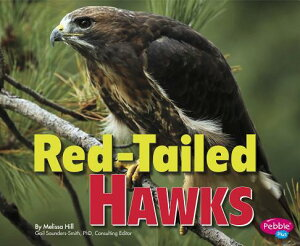 Red-Tailed Hawks RED-TAILED HAWKS (Birds of Prey) [ Gail Saunders-Smith ]