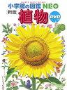 小学館の図鑑NEO〔新版〕 植物 DVDつき [ 門田 裕一 ]