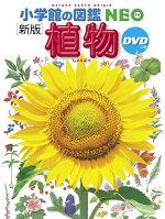 小学館の図鑑NEO〔新版〕 植物 DVDつき (小学館の図鑑 NEO)