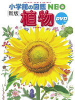 〔新版〕 植物 DVDつき