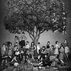 【楽天ブックスならいつでも送料無料】タイトル未定 (Type B 通常盤 2CD) [ AKB48 ]