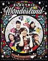 ももいろクリスマス2017 〜完全無欠のElectric Wonderland〜 LIVE Blu-ray(初回限定版)【Blu-ray】