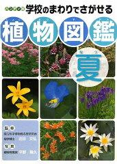 【送料無料】学校のまわりでさがせる植物図鑑(夏) [ 平野隆久 ]