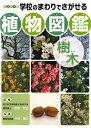 【送料無料】学校のまわりでさがせる植物図鑑(樹木) [ 平野隆久 ]