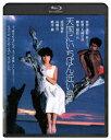 天国にいちばん近い島【Blu-ray】 [ 原田知世 ]
