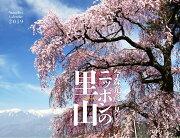カレンダー2019 今森光彦が見つめるニッポンの里山