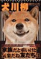 犬川柳(柴犬ウォッチ)