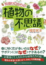 知識ゼロからの植物の不思議 [ 稲垣栄洋 ] - 楽天ブックス