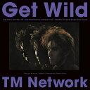 Get Wild (完全生産限定)【アナログ盤】 [ TM