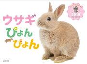 カレンダー2019 ウサギぴょんぴょん