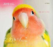 カレンダー2019 かわいんこ インコと小鳥のカレンダー