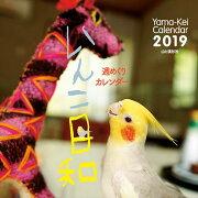 カレンダー2019 週めくりカレンダー いんこ日和