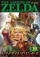 ゼルダの伝説 トワイライトプリンセス(10)