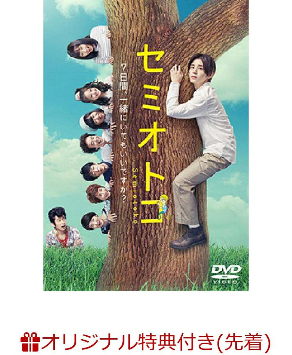 【楽天ブックス限定先着特典】セミオトコ DVD-BOX(B6クリアファイル付き)