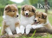 カレンダー2019 Dogs