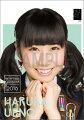 (卓上) 上野遥 2016 HKT48 カレンダー