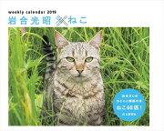 カレンダー2019 岩合光昭×ねこ