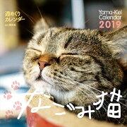 カレンダー2019 週めくりカレンダー なごみ猫