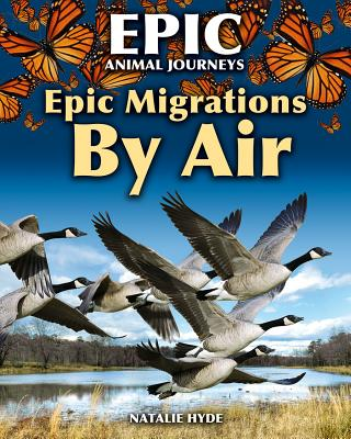Epic Migrations by Air画像