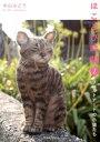 ほころびの時間(2) フェルトアートの子猫たち [ 中山みど...