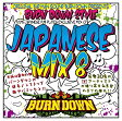 100% JAPANESE DUB PLATES EXCLUSIVE MIX CD BURN DOWN STYLE JAPANESE MIX 8