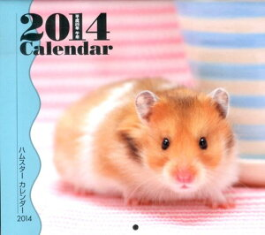 【送料無料】ミニカレンダー ハムスター