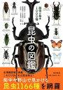 昆虫の図鑑 路傍の基本1000種 [ 福田晴夫 ]