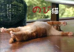 【楽天ブックスならいつでも送料無料】のび猫 [ 栗林愛 ]