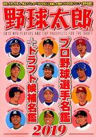 野球太郎(No.030)