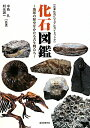 【送料無料】化石図鑑