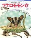 【送料無料】フクロモモンガ