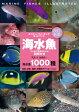 海水魚改訂新版 ひと目で特徴がわかる図解付き (ネイチャーウォッチングガイドブック) [ 加藤昌一 ]