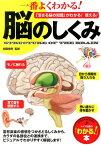 一番よくわかる!脳のしくみ 「活きる脳の知識」がわかる!使える! (「わかる!」本) [ 加藤俊徳 ]