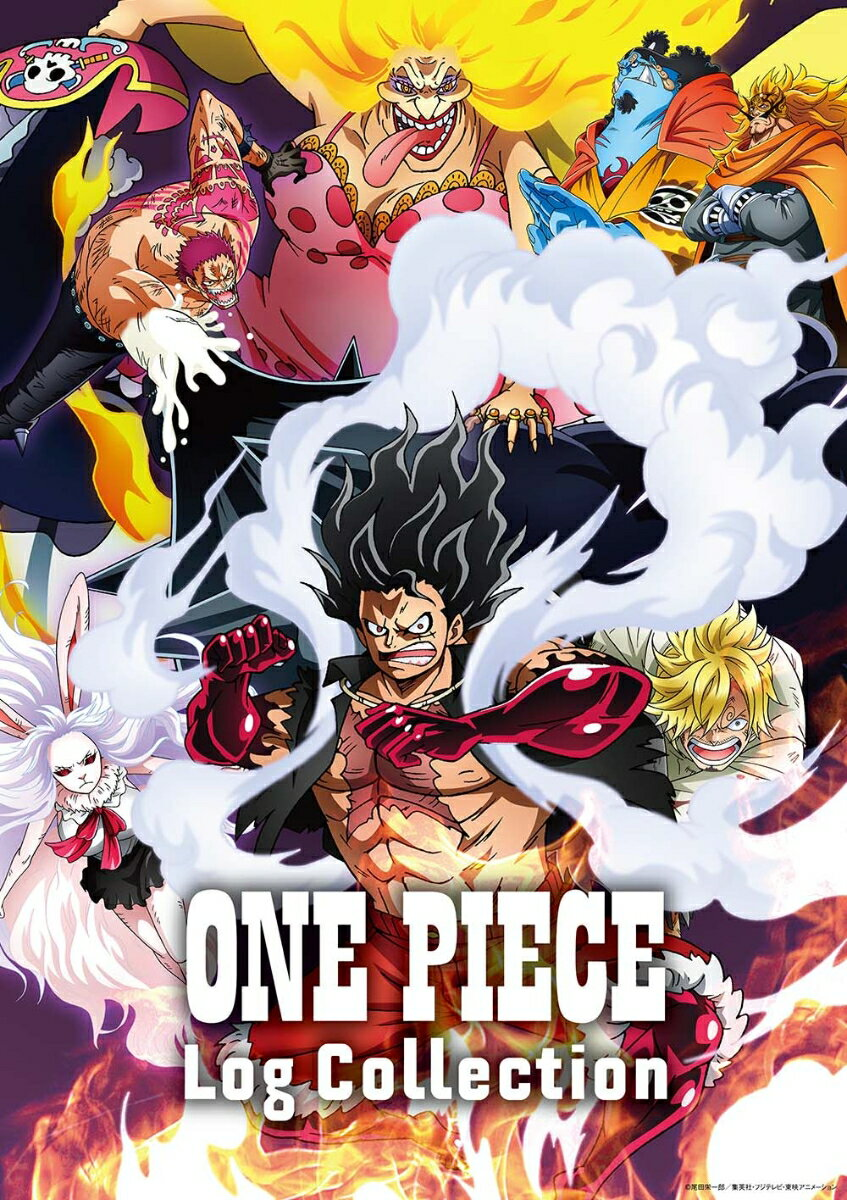 """ONE PIECE Log Collection """"LEVELY""""画像"""
