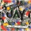 何も言えなくて…~THE BEST OF JAYWALK~ [ JAYWALK ]