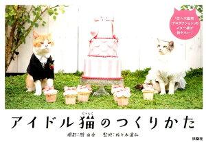 アイドル猫のつくりかた [ 関由香 ]