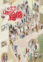 体内活劇「はたらく細胞」(完全生産限定版)【Blu-ray】