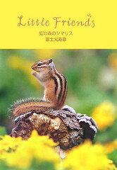 【送料無料】虹の森のシマリス