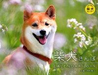 柴犬さんぽカレンダー