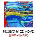 【先着特典】BLOOD SHIFT (初回限定盤 CD+DVD) (浅井健一本人デザインステッカー Type.C付き) [ 浅井健一 ]