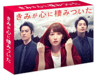 きみが心に棲みついた DVD-BOX [ 吉岡里帆 ]