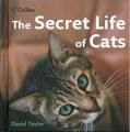 【バーゲン本】 The Secret Life of Cats [洋書]
