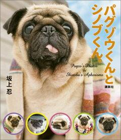 パグゾウくんとシノブくん。 Pugzo's Photos & Shinobu'