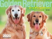 カレンダー2020 ゴールデン・レトリーバー