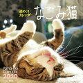 週めくりカレンダーなごみ猫(2020)