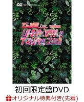 【楽天ブックス限定先着特典】UHHA! YAAA!! TOUR!!! 2019 SPECIAL 初回限定盤DVD(缶バッジ付き)