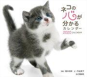 カレンダー2020 ネコの心が分かるカレンダー