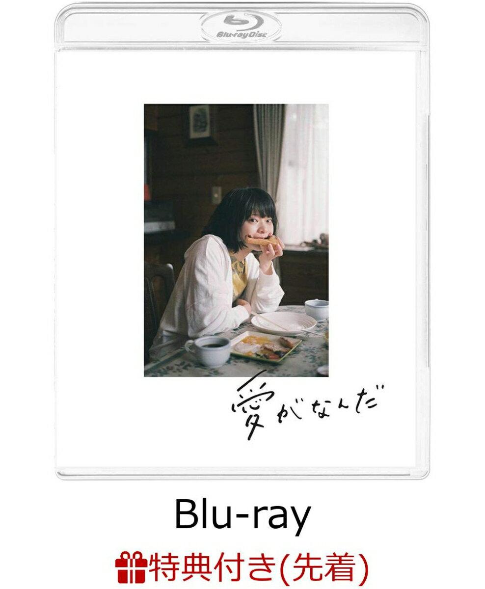 【先着特典】愛がなんだ(特装限定版)(A4クリアファイル付き)【Blu-ray】