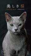 美しき猫Cats in the Blackカレンダー