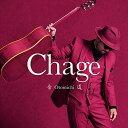 音道 [ Chage ]